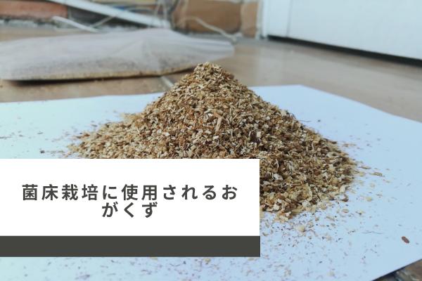 sawdust-for-mushroom